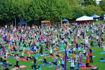 yoga-day-festival-meditation-annual-roma-street-pa11